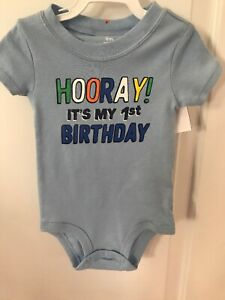 e60f2e0db Carter's $12 Hooray It's My 1st Birthday! 9 Mo boys first bday ...