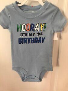 939935df298f Carter's $12 Hooray It's My 1st Birthday! 9 Mo boys first bday ...
