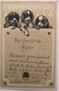 Antique-Postcard-Best-Christmas-Wishes-Three-Dogs-Posted-1904