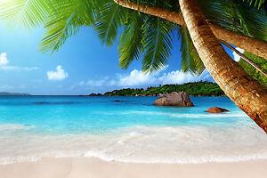 Risultati immagini per caribbean beach 300x200