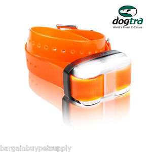 Dogtra-EDGE-1-Mi-EXTRA-REPLACEMENT-Add-a-Dog-COLLAR-RECEIVER-Orange-EDGE-RX-ORG