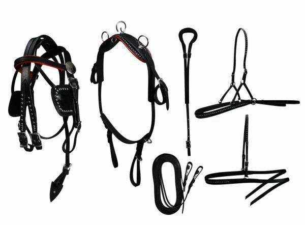 Mini Horse   Small Pony Size Leather Show Harness Set.