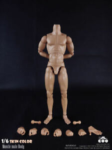 1-6-Scale-COOMODEL-Male-Muscle-Body-Model-BD010-Collectable-Action-Figure-Toys
