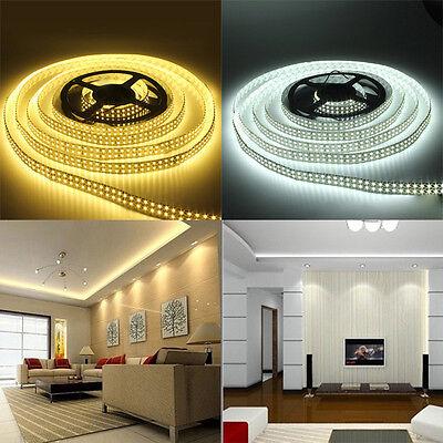 5M Double Row RGB 5050 3528 5630 300 600 1200 LED White Warm Strip Light