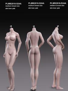oferta especial PLMB PLMB PLMB 2017-S24A Tbleague 1 6 figura de cuerpo flexible sin costuras Acero pálido adolescentes  moda clasica