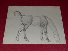 [EQUITATION CHEVAUX HORSES] DESSIN ORIGINAL ANCIEN Crayon Encre Ink (19)