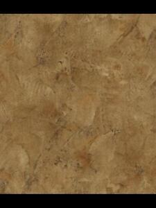Wallpaper-Designer-Brown-Faux-Stucco-Wall