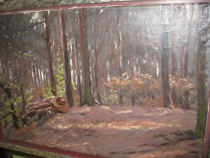 BAUR-Albert-jun-um1930-lichtdurchfluteter-Waldboden-Ol