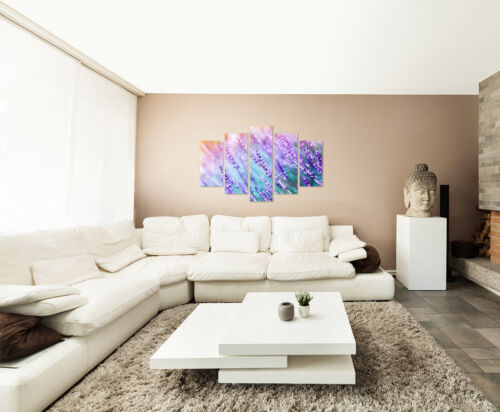 Wall Mural Nature Photography Lavender in the sun on Canvas