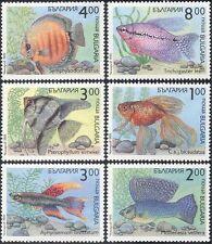 Bulgaria 1993 Tropical Fish/Pets/Discus/Goldfish/Nature/Wildlife 6v set (b5733)