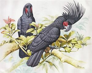 Hand-painting-Balinese-Parrots-Birds-321