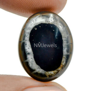 Cts-11-80-Natural-Spider-Web-Septarian-Gronate-Cabochon-Oval-Cab-Loose-Gemstone