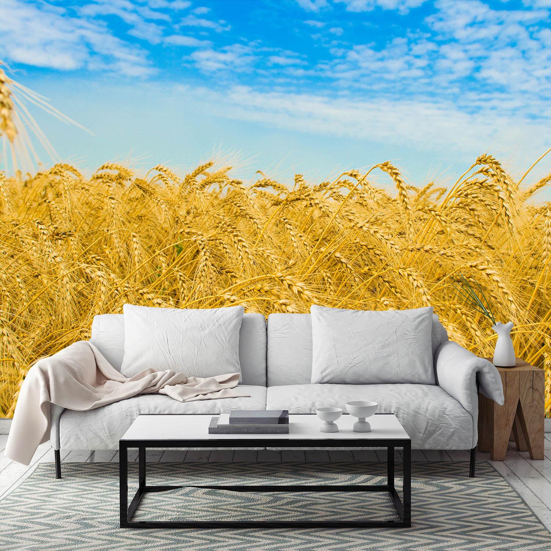 3D goldene Weizen Reif 65 Fototapeten Wandbild Fototapete BildTapete Familie DE