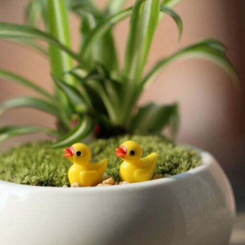 6 //10Pcs//set Mini cute little yellow Ornaments Garden Fairy Dollhouse Miniature