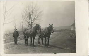 VILLAGE-STREET-SCENE-MAN-WITH-TWO-HORSES-amp-ORIGINAL-VINTAGE-REAL-PHOTO-POSTCARD