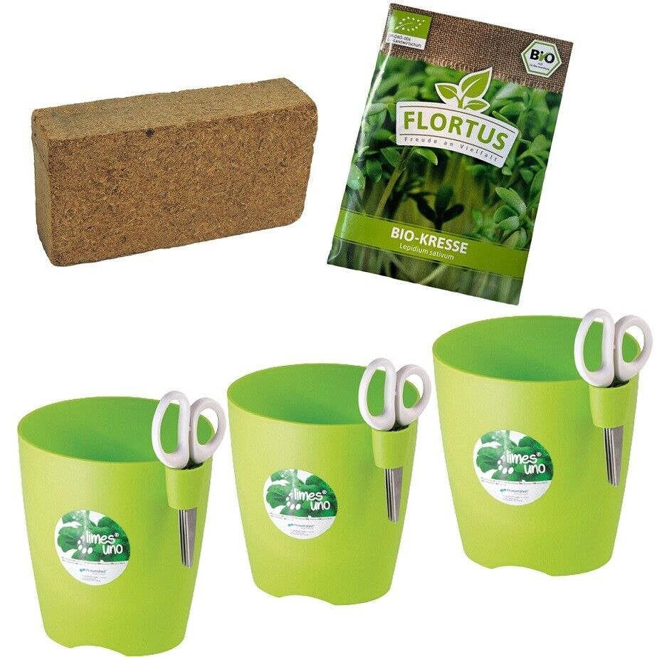 3 Set Herbs Pot With Coconut Earth And Cress Seeds