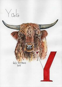 Yak-ABC-series-original-Gala-Kostroma-watercolor-alphabet-painting-bull-art