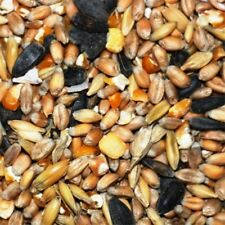 (EUR 0,66/kg) 25kg Mecklenburger Landkörnerfutter GVO-frei Hühnerfutter Körner