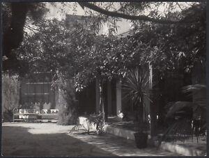 Yz1837 New York City 1950 - Un Cortile Alberato - Fotografia D'epoca Rendre Les Choses Pratiques Pour Les Clients