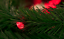 23FT-RED-LED-Christmas-Lights-C6-Green-Wire-Steady-Light-Holiday-XMASS-70L-23-039 thumbnail 3