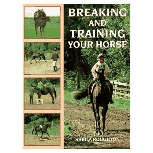 Breaking and Training Your Horse,Sheila Roughton