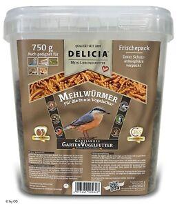 Delicia-750-g-Mehlwuermer-im-Eimer-Vogelfutter-Insektenfutter-Vogel