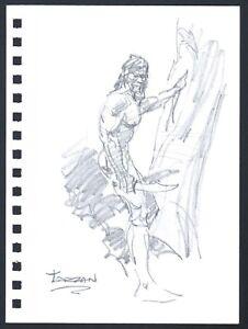 Mike-Hoffman-Tarzan-Original-Pencil-Art-comic-artist-Personal-Notebook-2013