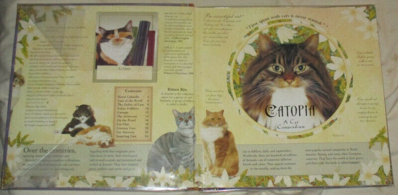 Catopia . A Cat Compilation by Anne Mortimer