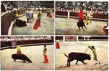 zehn AK Spanien, Stierkampf, 1930er?