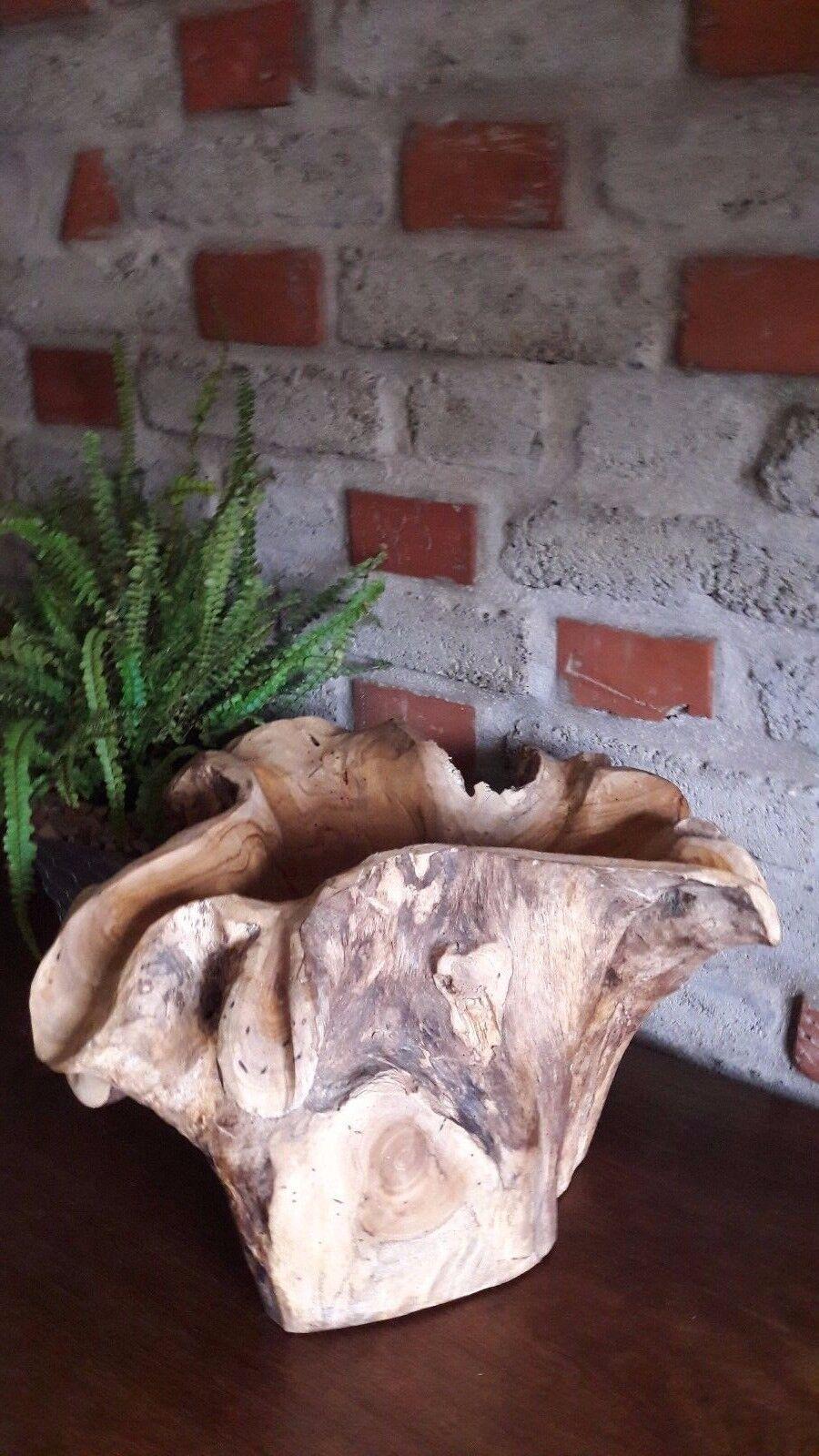 Pflanzenkübel Teakholz Teakholz Teakholz Wurzel Wild Unikat Blaumen Deko Massiv Rustikal Asiagarten | Merkwürdige Form  ee1b00