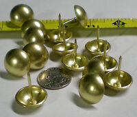 Brass Plated Smooth Dome Large Head Nail/upholstery Tack Pkg 50