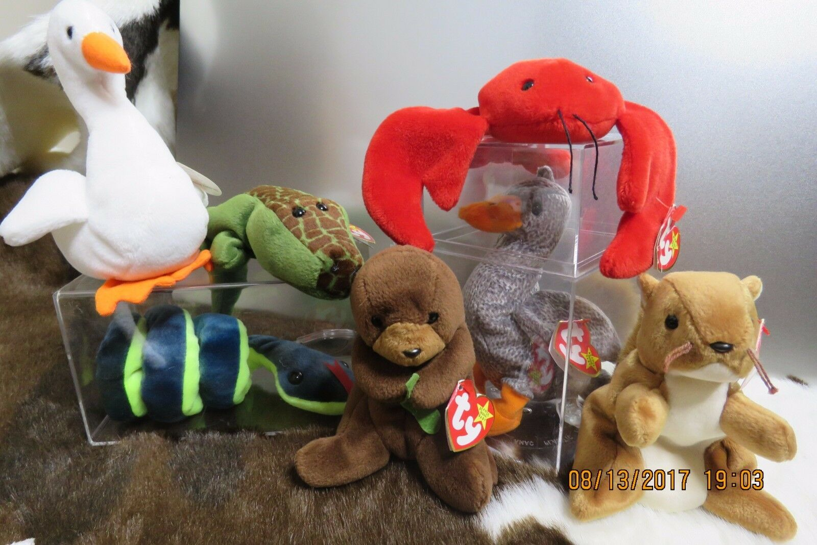 'Ty' Beanie Babies Retired 90's Mixed Lot of 7 W Tags- Collectables