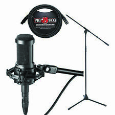 Audio Technica AT-2035 Studio Microphone Shock Mount 10' Cable and Mic Stand
