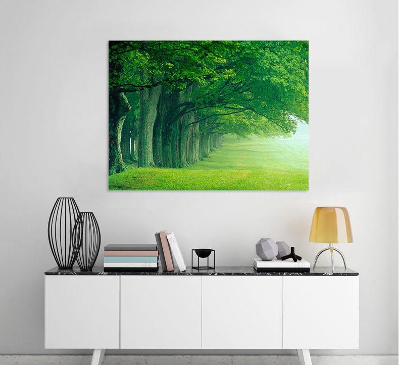 3D Grner Wald 345 Fototapeten Wandbild Fototapete BildTapete Familie AJSTORE DE