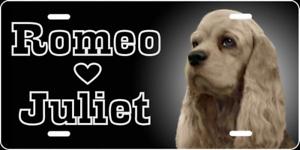 BEAGLE PAW LOVE PET DOG METAL LICENSE PLATE FRAME TAG HOLDER