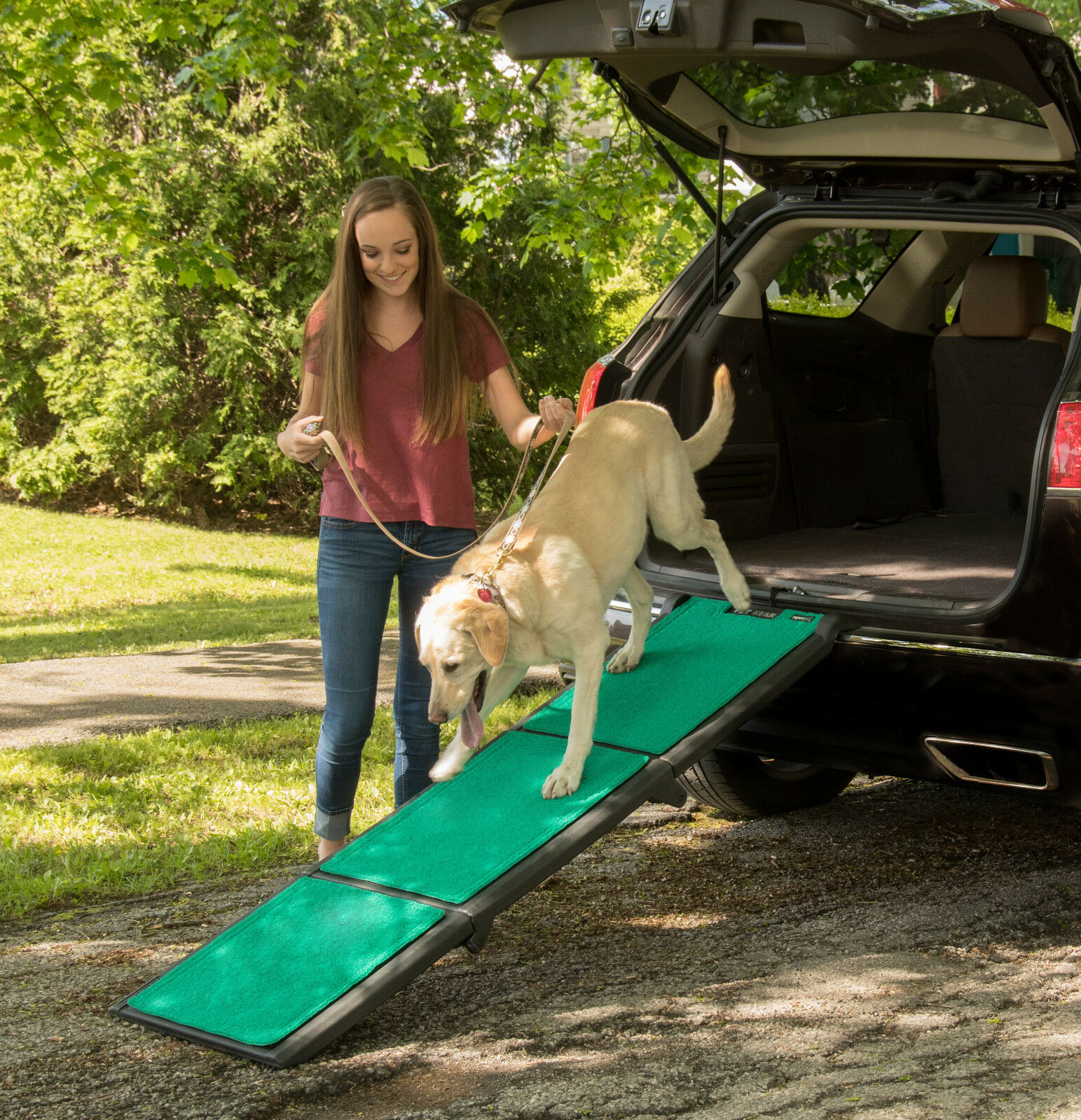NEW  Pet Gear Extra Wide Tri-Fold Dog Dog Dog Cat Ramp with supertraX carpet 71  Long 9b01fb