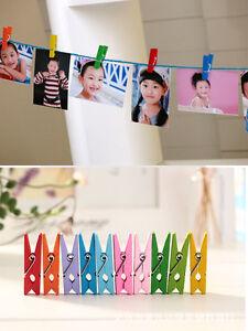 50Pcs-Unique-Mixed-Candy-Color-Wood-Lined-Clothes-Clip-Pins-Wooden-Photo-Clips