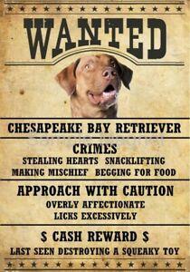 "VIZSLA Wanted Poster Fridge Dog Magnet LARGE 3.5/"" X 5/"""