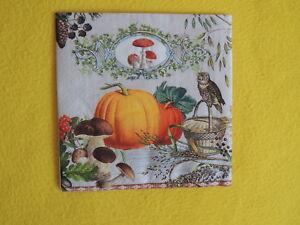 5 Servietten IGEL Serviettentechnik Motivservietten Herbst hedgehog Tiere Pilze