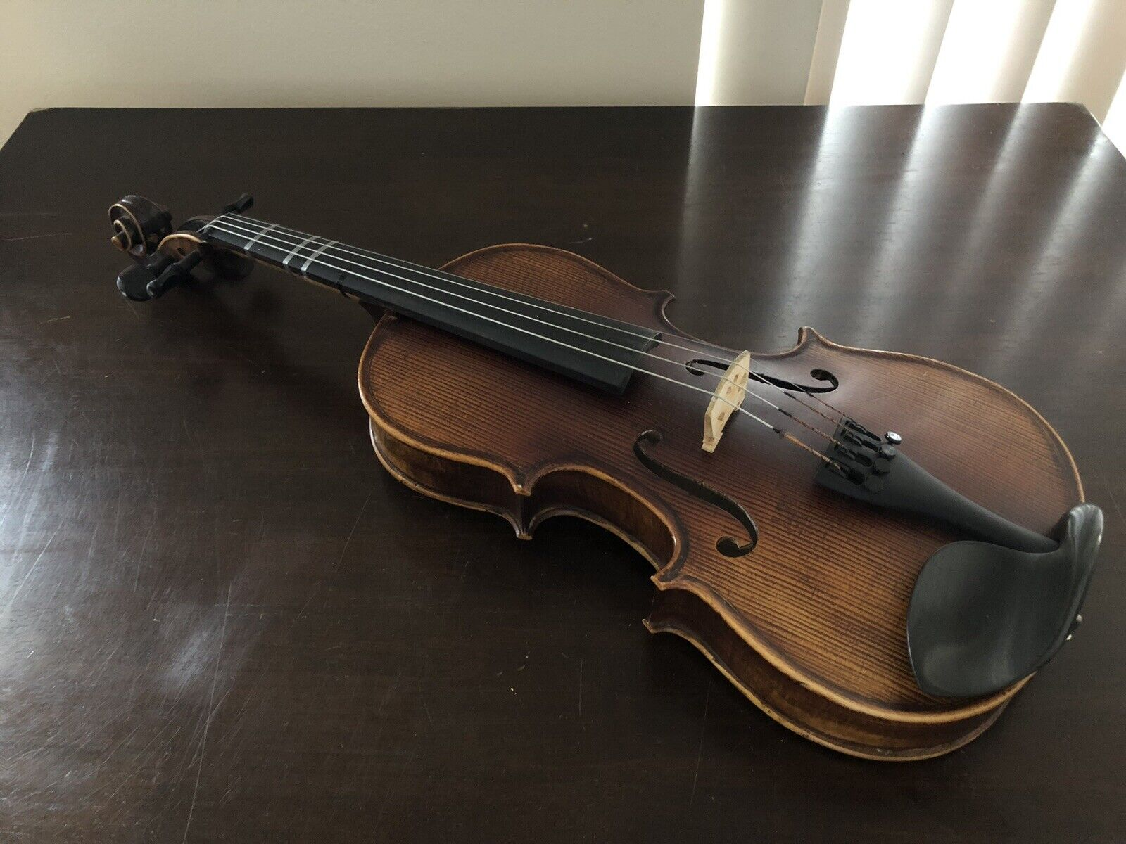 Florea Prodigy Violin 0323 3 4 Größe (Used) with Accessories