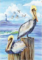 Pelicans Summer Garden Flag Beach Bird Mini Yard Banner 12 X 18