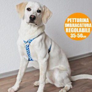 Pettorina-Imbragatura-per-Cani-Collare-Taglia-Unica-Regolabile-35-50-cm