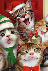 Cats Making Silly Faces Howard Robinson Box Of 12 Funny Christmas Cards 745469182330 Ebay