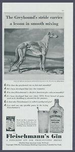 Fleischmann Gin Greyhound Dog Vintage Magazine Print Ad 1940