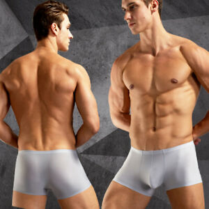 underwear-men-Boxer-shorts-Ice-silk-cool-Seamless-sexy-men-039-s-underpants-boxer