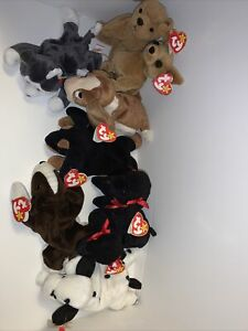 Ty Beanie Babies: Lot Of 14 Dogs, GiGi Bruno, Dotty Nanook Tracker Tiny Tuffy