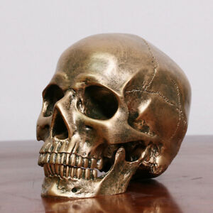 Human-Bronze-Resin-Skull-Model-Medical-Halloween-Realistic-1-1-Statue-Decor-cL-Y