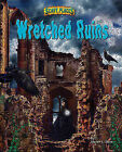 Wretched Ruins by Steven L Stern (Hardback, 2010)
