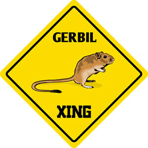 Turtle Xing Novelty Funny Metal Sign 8 in x 12 in