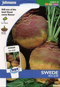 Johnsons-Samen-Bildhafte-Packung-Gemuese-Swede-Beste-Aus-Alle-1000-Samen